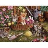 Kittens - 275 Pieces Jigsaw Puzzle By Cobble Hill