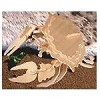 Common Shore Crab - 3D Jigsaw Woodcraft Kit Wooden Puzzle