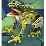 Frog - Illuminated 3D Jigsaw Woodcraft Kit Wooden Puzzle
