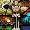 Human Skeleton - 3D Jigsaw Woodcraft Kit Wooden Puzzle