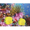 Coral Carnival - 500 Pieces Jigsaw Puzzle by Springbok